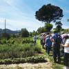 Foto-fattoria-didattica