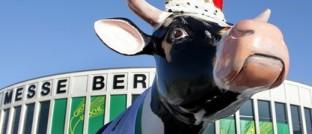 Kuh Else lädt zum Besuch der Grünen Woche ein