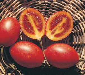 Frutti del tamarillo