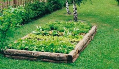 Orto ricavato all'interno di un giardino