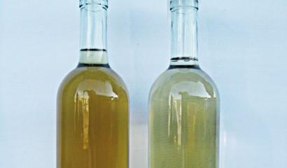 Il vino contenuto nella bottiglia di sinistra si è ossidato dopo 24 ore dal travaso. Per la conservazione del vino bisogna aggiungere metabisolfito di potassio prima del travaso.