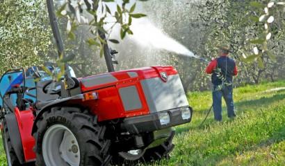 Concimazione fogliare dell'olivo