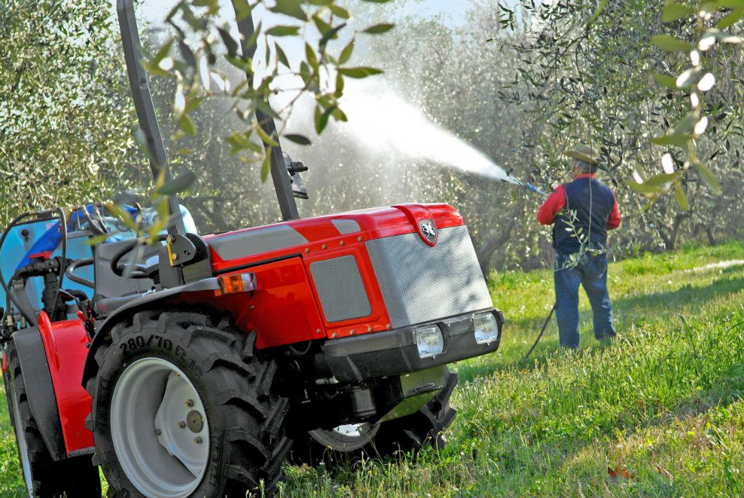 Calendario Trattamenti Olivo Biologico.Concimazione Fogliare Dell Olivo In Produzione