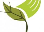 Pollice Verde Ferrara