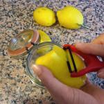 scorze_limoni_crema_di_limoncello