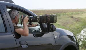 maurizio-bonora-birdwatching-fotografia-naturalistica-uccelli-campagna
