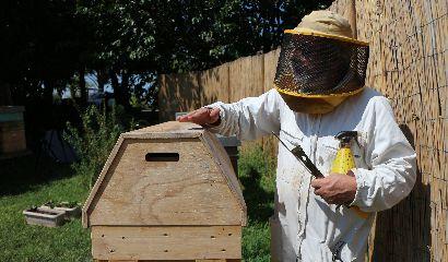 Alessandro Pistoia Apicoltura Beekeeping Beekeeper