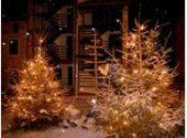 Poffabro e Andreis_Presepi e alberi