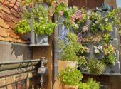 giardino verticale piante aromatiche terrazzo balcone