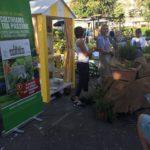 forte-dei-marmi-vita-in-campagna-giardini-arte-fiori-forte-2018_05