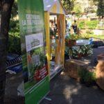 forte-dei-marmi-vita-in-campagna-giardini-arte-fiori-forte-2018_06