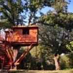 2_casetta e albero monumentale