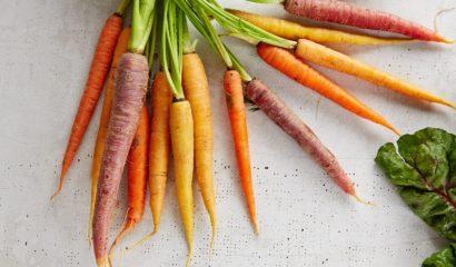 carote-vita-in-campagna