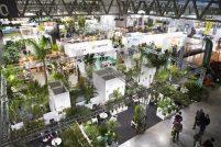 Mypant & Garden