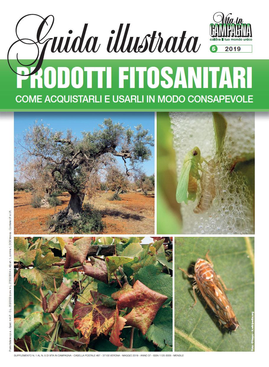 maggio_suppl-fitosanitari-ok!!!