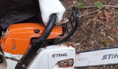 Il corretto uso della motosega per lavorare in sicurezza