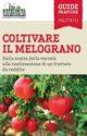 COLTIVARE IL MELOGRANO<br>Dalla scelta delle varietà alla realizzazione di un frutteto da reddito