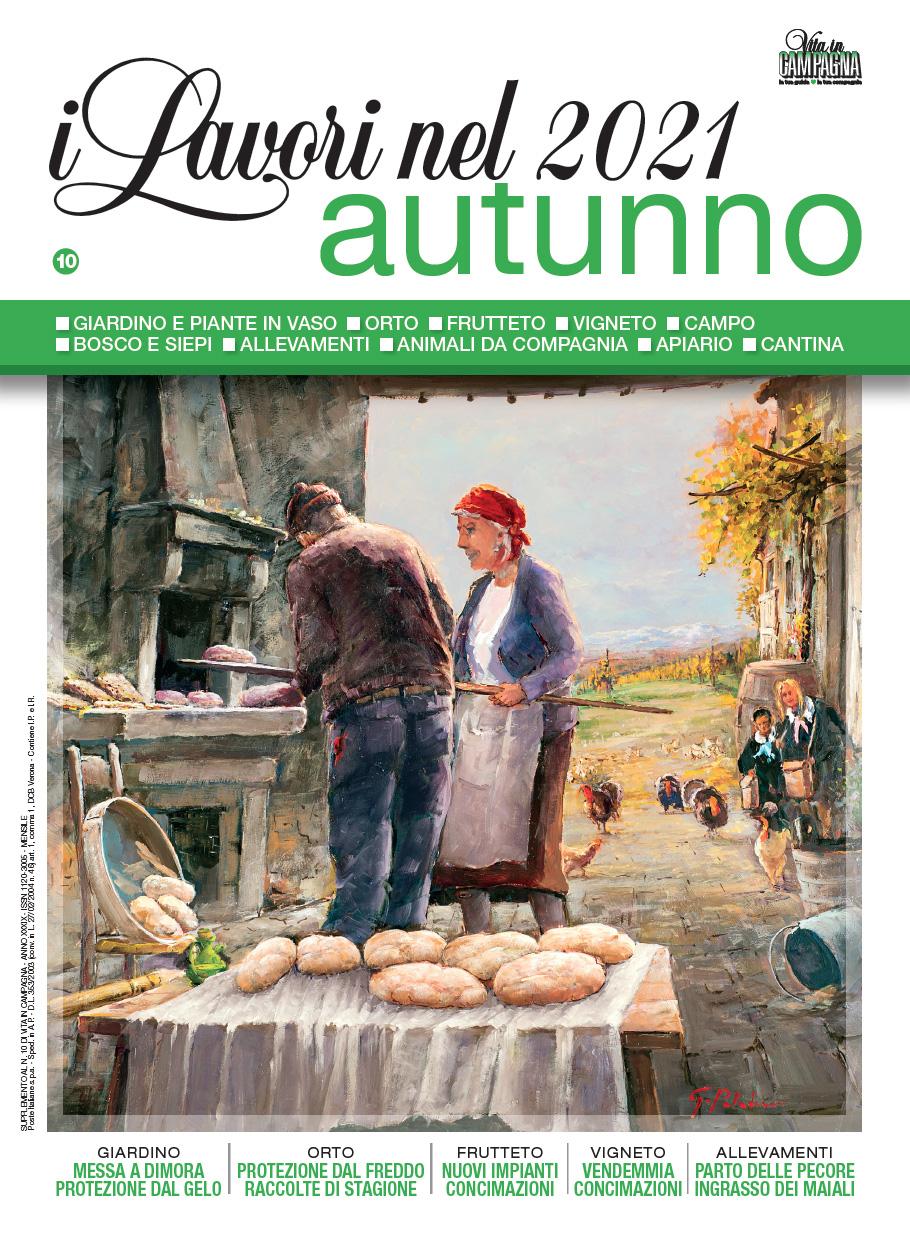 Copertina-Lavori-autunno